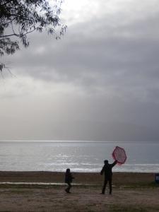 still flying kites yesterday