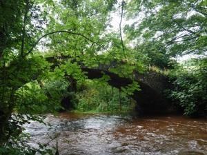 local cattle bridge almost overcome with the deluge