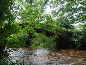 local cattle bridge almost overcome with the deluge